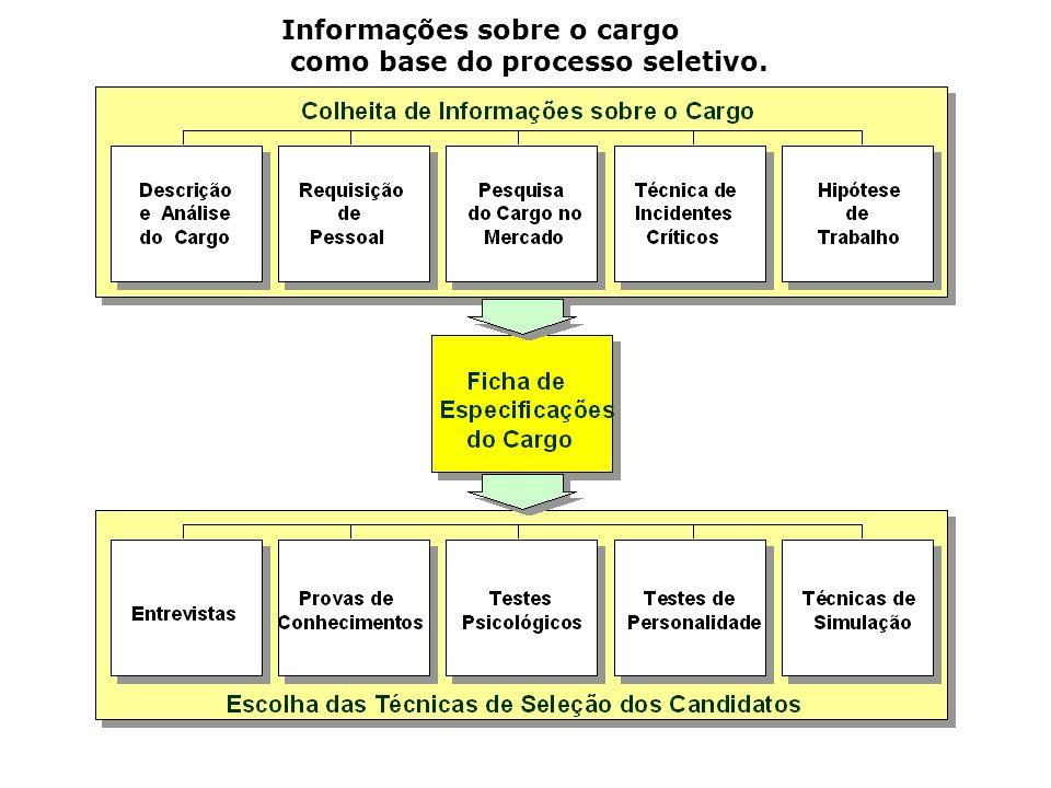 Informações sobre o cargo como base do processo seletivo.
