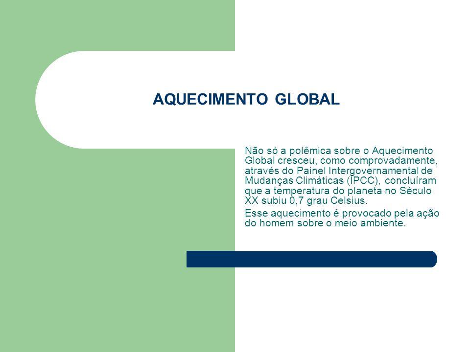AQUECIMENTO GLOBAL Não só a polêmica sobre o Aquecimento Global cresceu, como comprovadamente, através do Painel Intergovernamental de Mudanças Climát