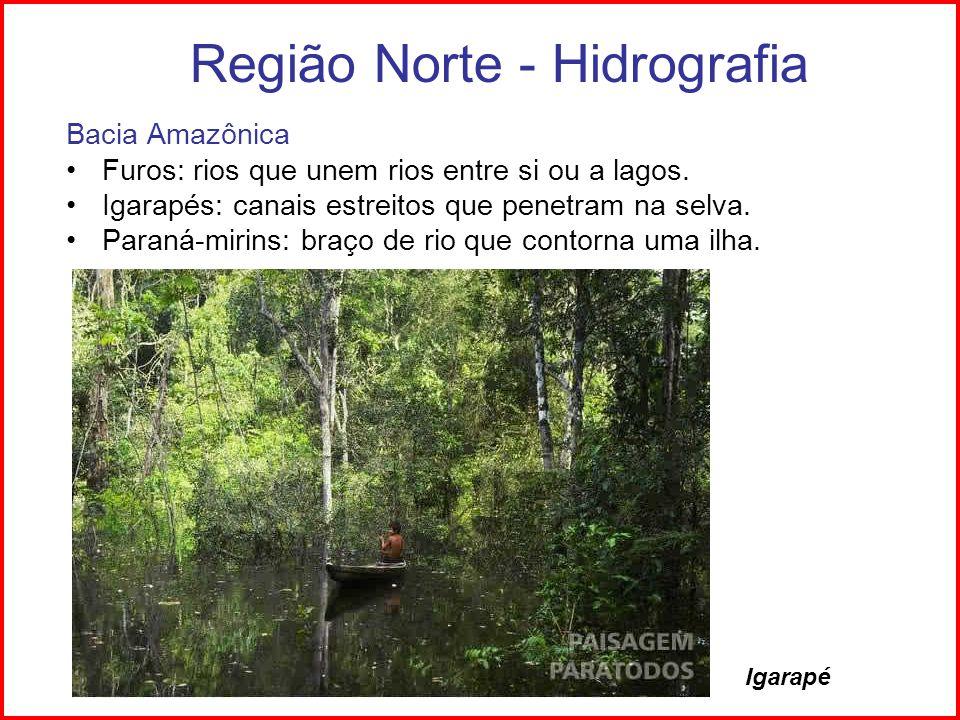 Região Norte - Hidrografia Bacia do Tocantins Hidrelétrica de Tucuruí – abastece Serra dos Carajás Presença da ilha do Bananal (Rio Araguaia)