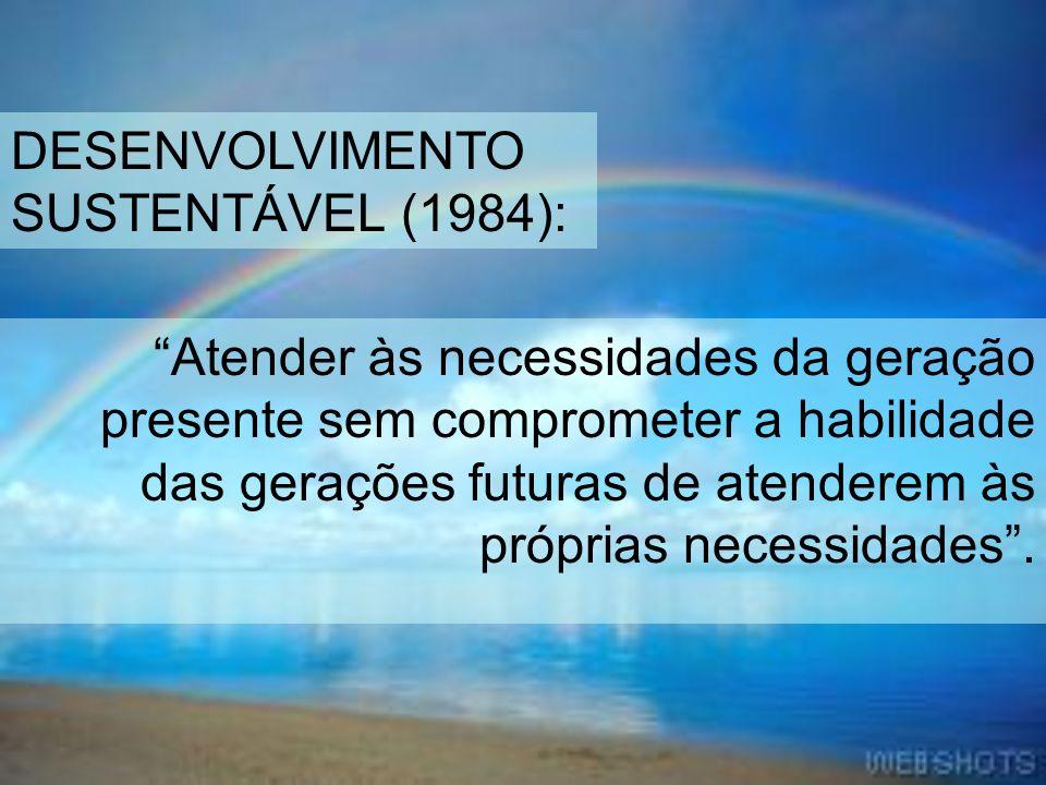 Atender às necessidades da geração presente sem comprometer a habilidade das gerações futuras de atenderem às próprias necessidades. DESENVOLVIMENTO S
