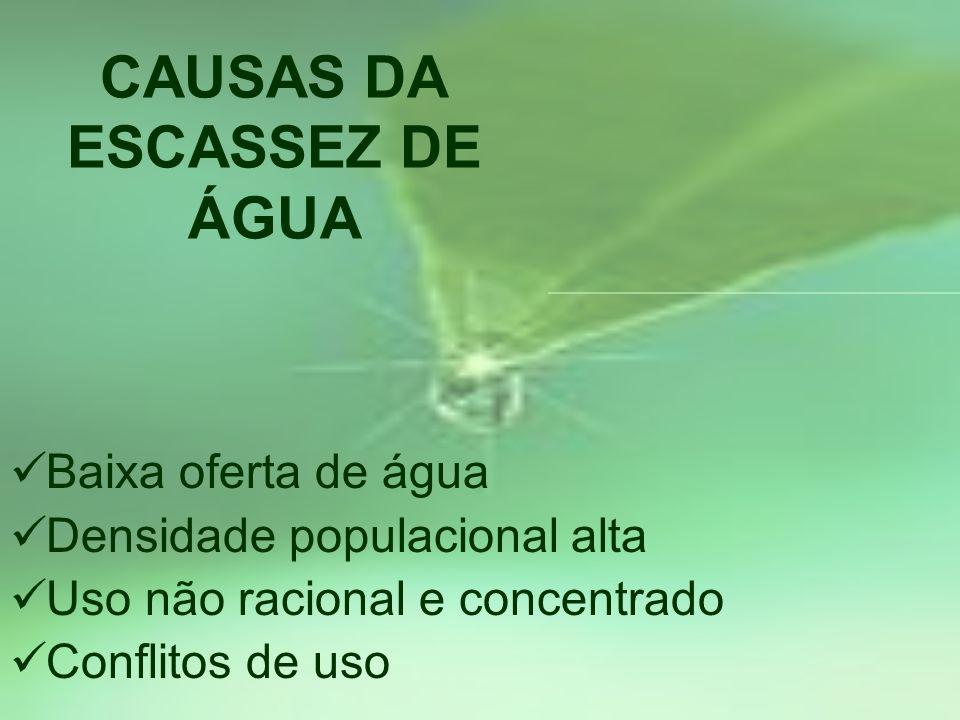 CAUSAS DA ESCASSEZ DE ÁGUA Baixa oferta de água Densidade populacional alta Uso não racional e concentrado Conflitos de uso