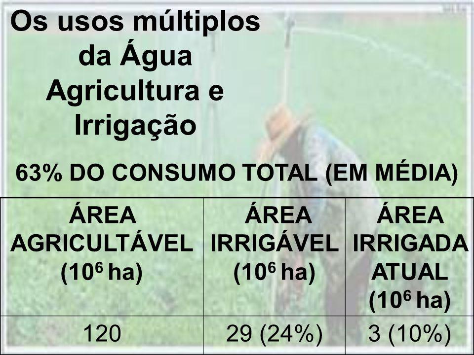 Os usos múltiplos da Água Agricultura e Irrigação ÁREA AGRICULTÁVEL (10 6 ha) ÁREA IRRIGÁVEL (10 6 ha) ÁREA IRRIGADA ATUAL (10 6 ha) 12029 (24%)3 (10%