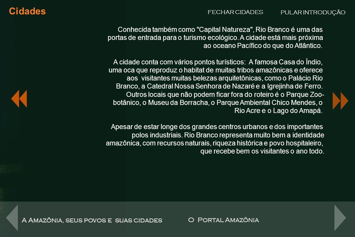 Um portal para abordar a maior região do Brasil, a maior floresta e a maior bacia hidrográfica do Mundo.