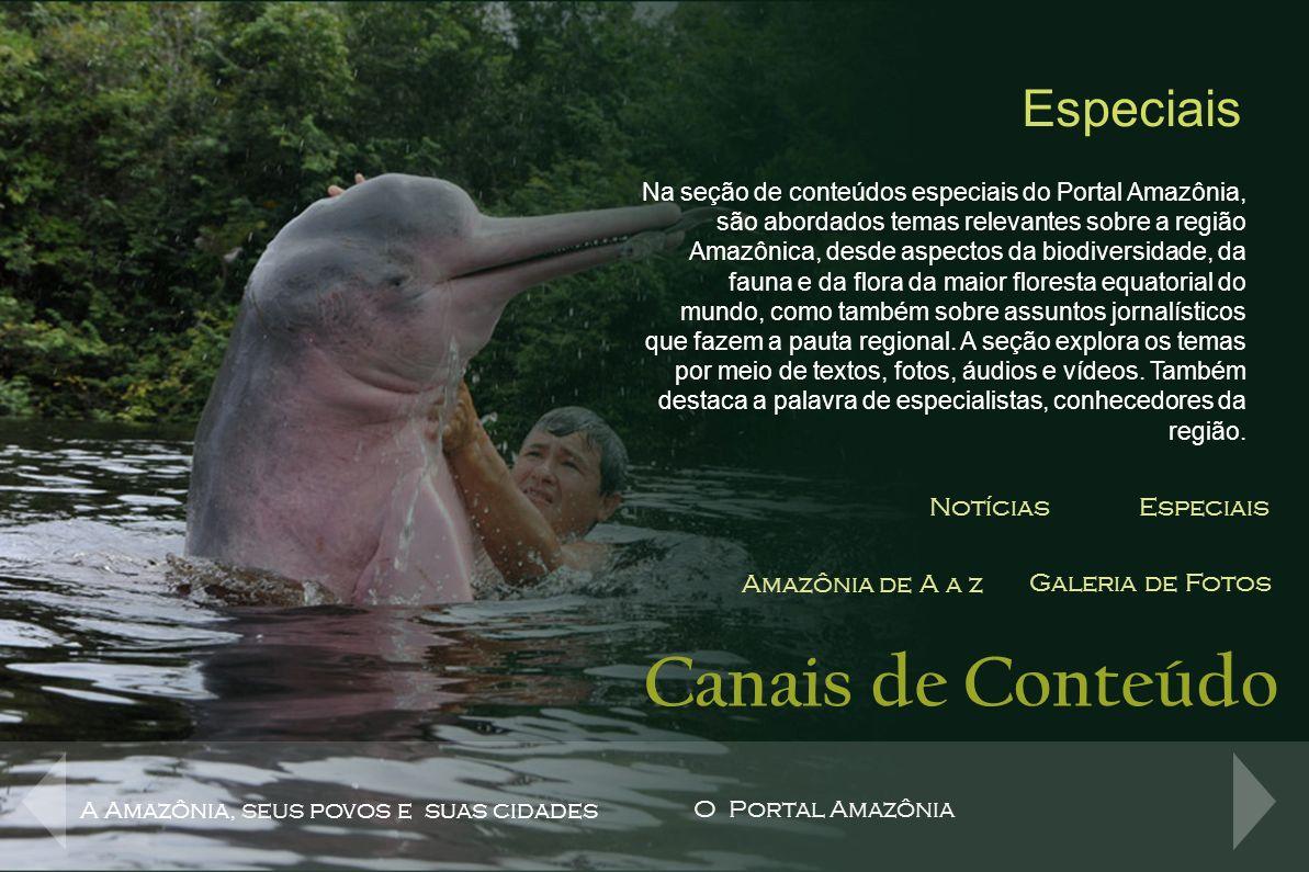 Canais de Conteúdo NotíciasEspeciais Amazônia de A a z Galeria de Fotos Amazônia de A a Z Site com contéudo de A a Z com informações sobre a Amazônia.