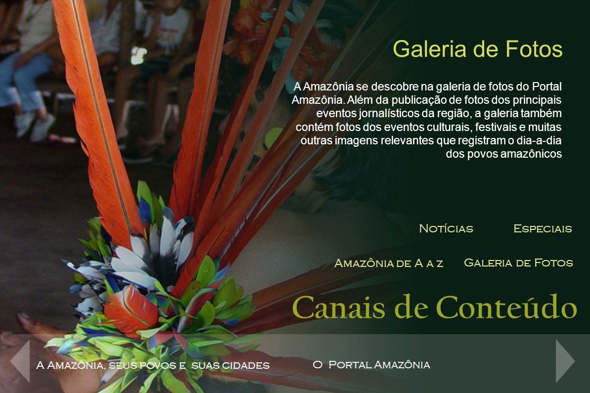 Formatos Publicitários Super-banner Super-banner Expansível SeloRelógioVídeo AnúncioBotão Retângulo A Amazônia, seus povos e suas cidades O Portal Amazônia