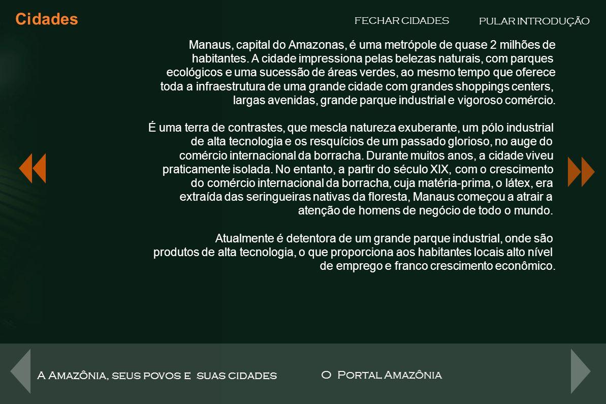 Manaus – Pólo Industrial Cidades FECHAR CIDADES O Polo Industrial de Manaus, um dos mais importantes parques frabris da América Latina, abriga mais de 500 empresas, com elevado índice de inovação tecnológica, competividade e produtividade.