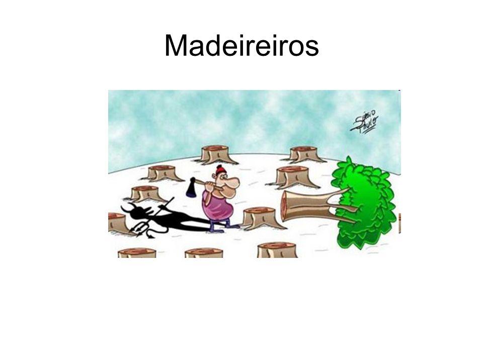 Madeireiros
