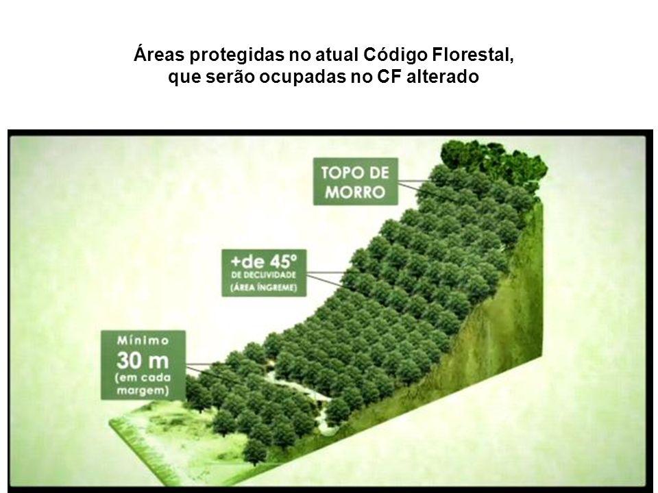 Áreas protegidas no atual Código Florestal, que serão ocupadas no CF alterado