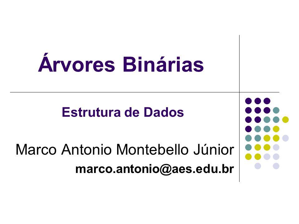 Árvores Binárias Marco Antonio Montebello Júnior marco.antonio@aes.edu.br Estrutura de Dados