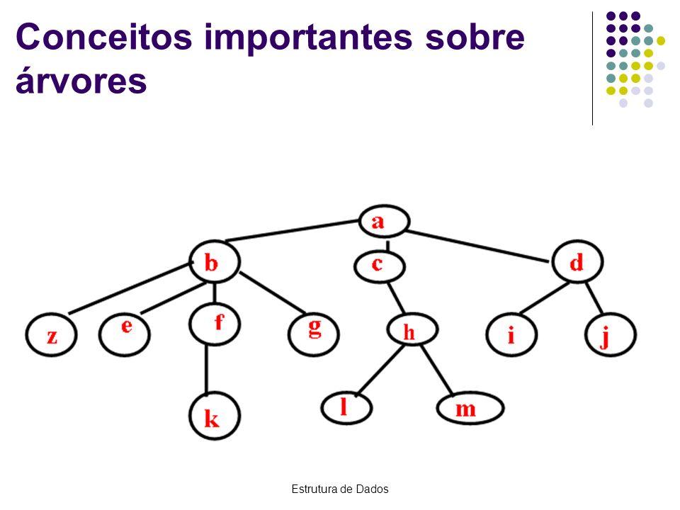 Estrutura de Dados Conceitos importantes sobre árvores