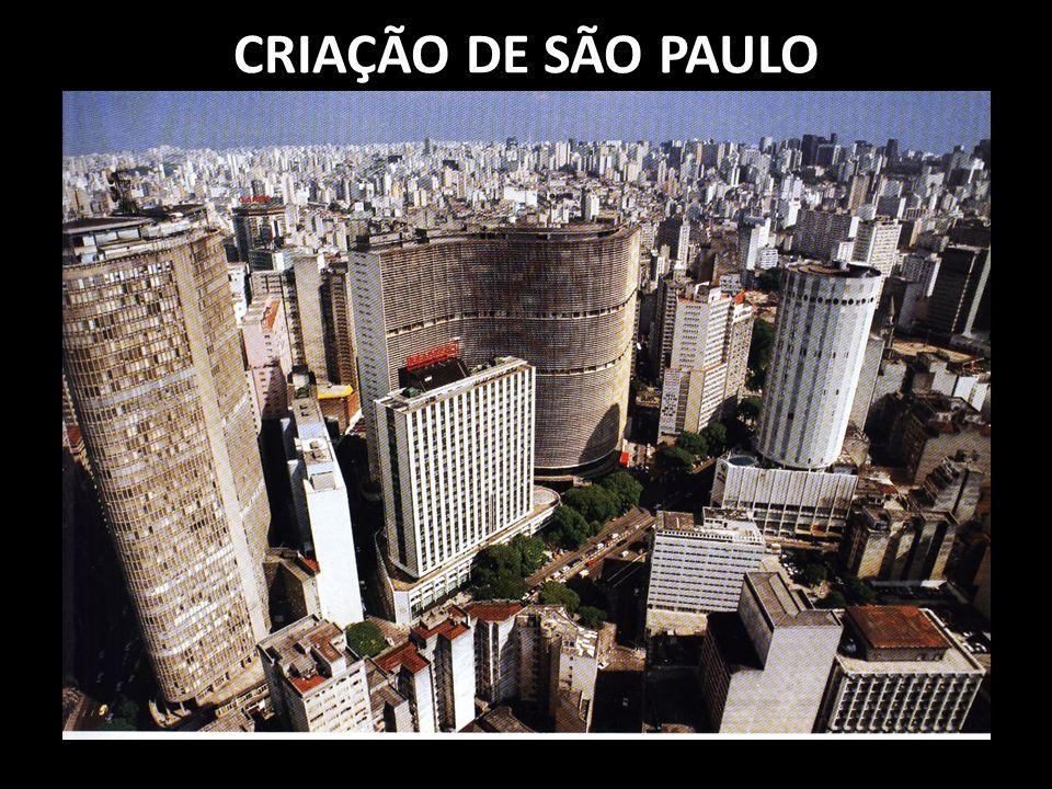CRIAÇÃO DE SÃO VICENTE - SANTOS