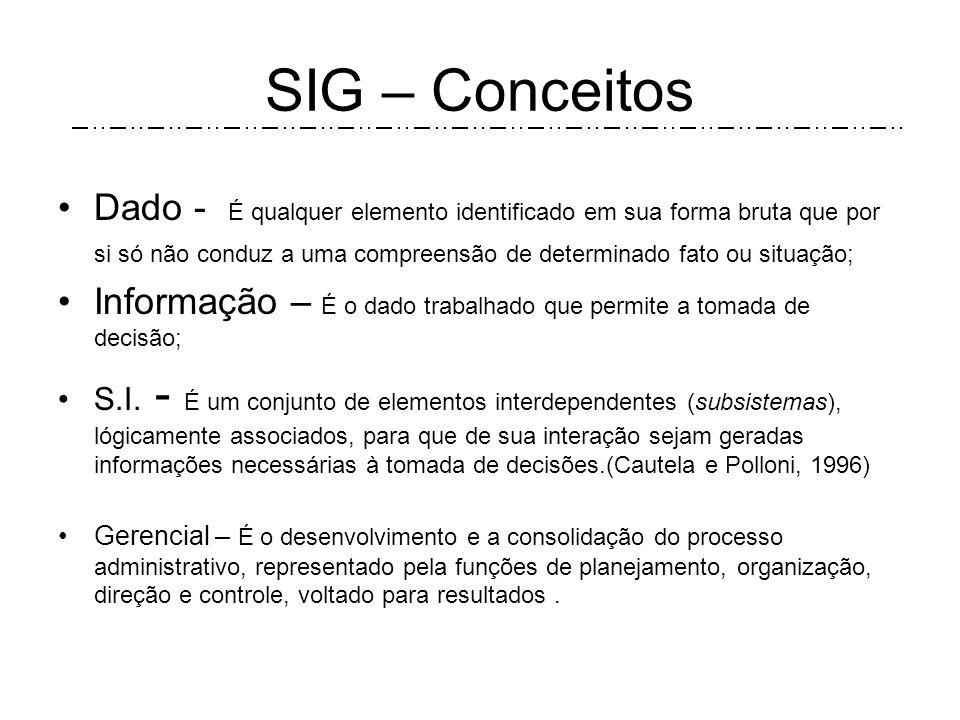 SIG – Estratégias -Estudo e racionalização dos Produtos e serv.