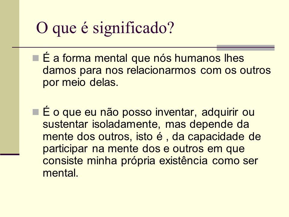 O que é significado? É a forma mental que nós humanos lhes damos para nos relacionarmos com os outros por meio delas. É o que eu não posso inventar, a