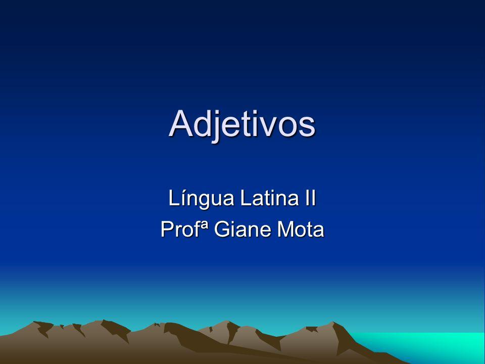 Adjetivos Língua Latina II Profª Giane Mota