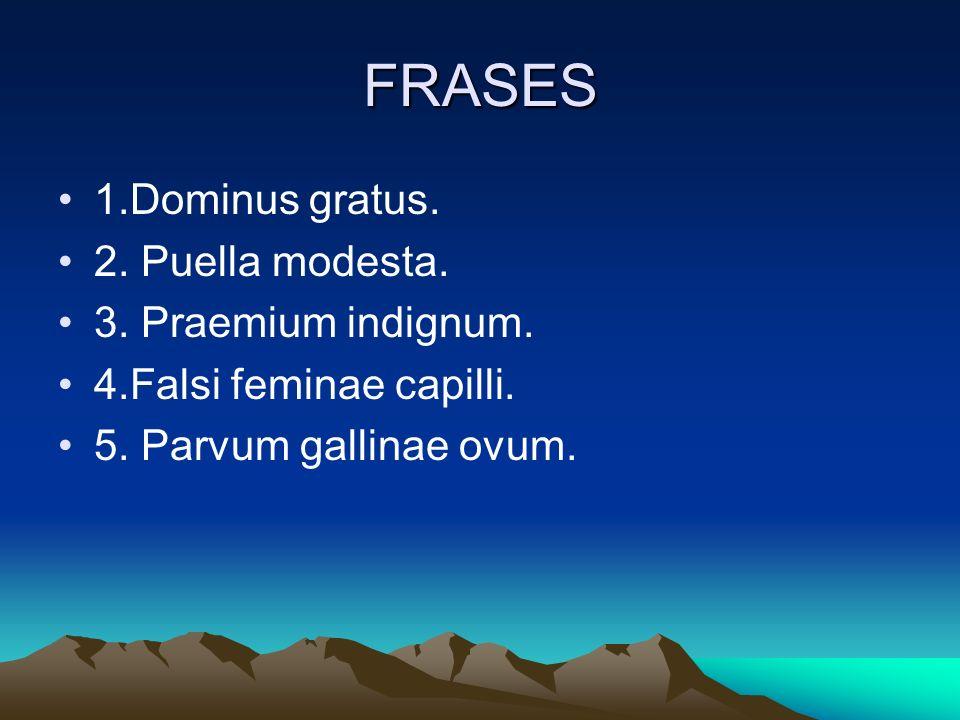 FRASES 1.Dominus gratus. 2. Puella modesta. 3. Praemium indignum. 4.Falsi feminae capilli. 5. Parvum gallinae ovum.