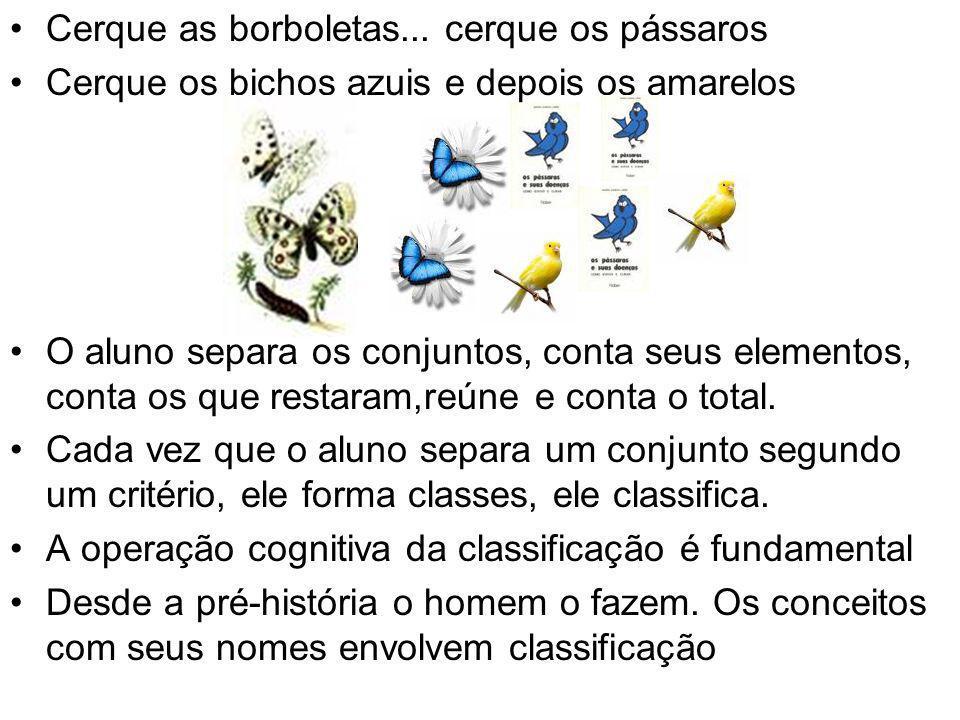 Cerque as borboletas... cerque os pássaros Cerque os bichos azuis e depois os amarelos O aluno separa os conjuntos, conta seus elementos, conta os que