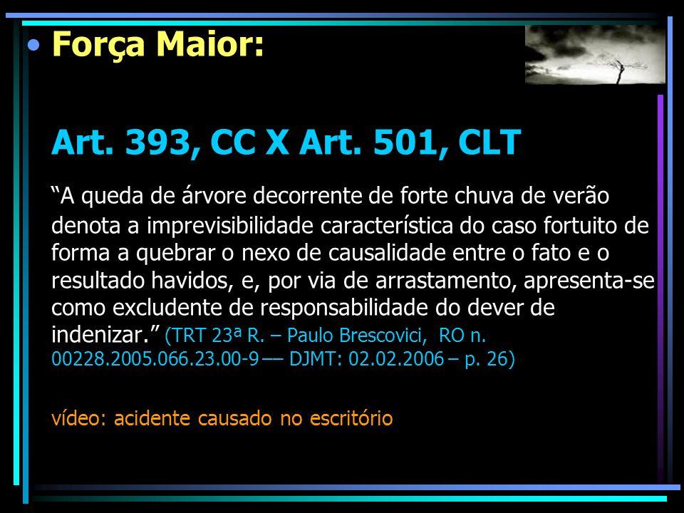 Força Maior: Art. 393, CC X Art. 501, CLT A queda de árvore decorrente de forte chuva de verão denota a imprevisibilidade característica do caso fortu