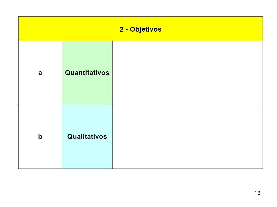 13 2 - Objetivos aQuantitativos bQualitativos