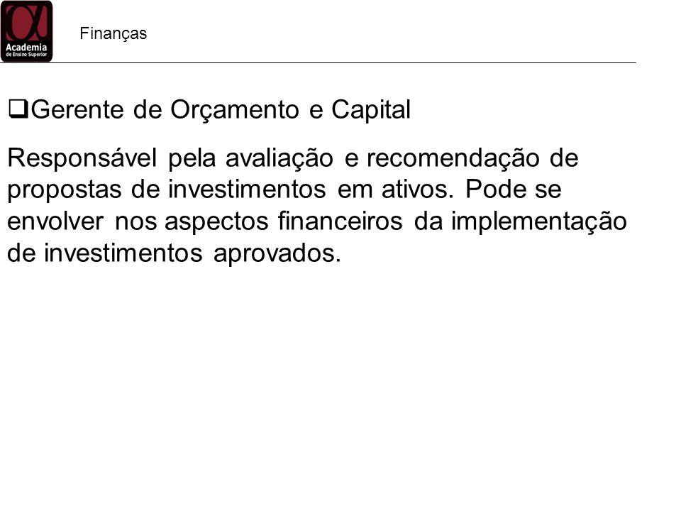 Finanças Gerente de Orçamento e Capital Responsável pela avaliação e recomendação de propostas de investimentos em ativos. Pode se envolver nos aspect