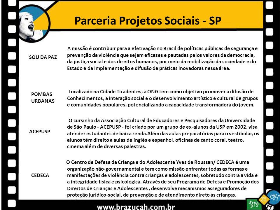 Parceria Projetos Sociais - SP A missão é contribuir para a efetivação no Brasil de políticas públicas de segurança e prevenção da violência que sejam
