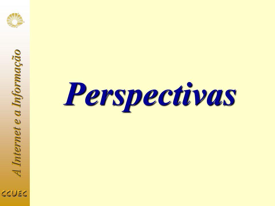 A Internet e a Informação Perspectivas