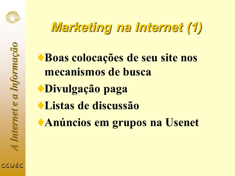 Marketing na Internet (1) Boas colocações de seu site nos mecanismos de busca Divulgação paga Listas de discussão Anúncios em grupos na Usenet