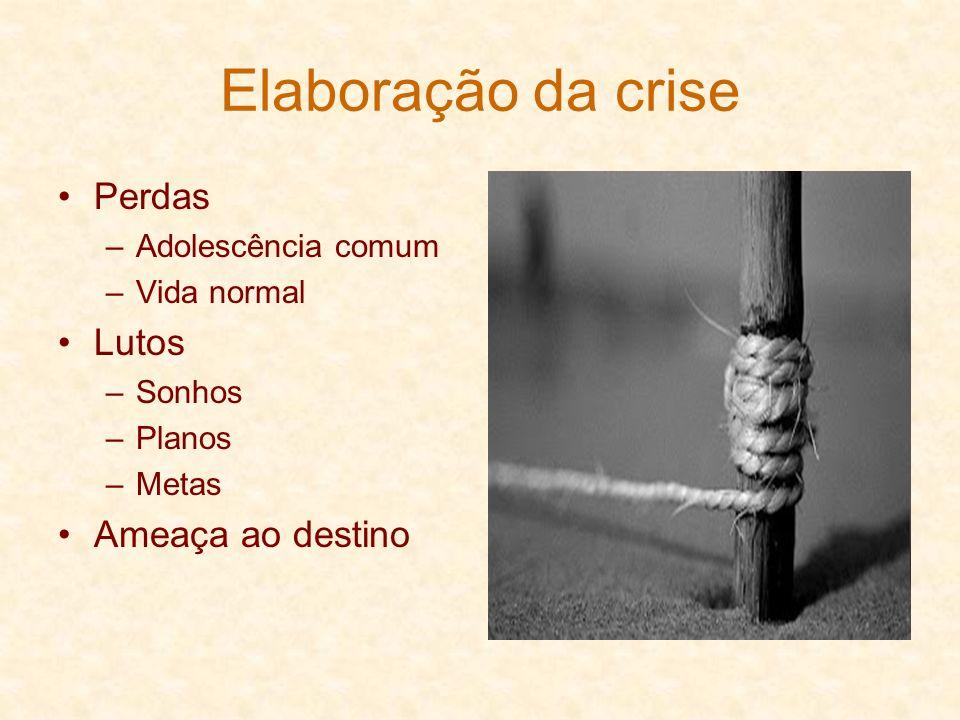 Elaboração da crise Perdas –A–Adolescência comum –V–Vida normal Lutos –S–Sonhos –P–Planos –M–Metas Ameaça ao destino