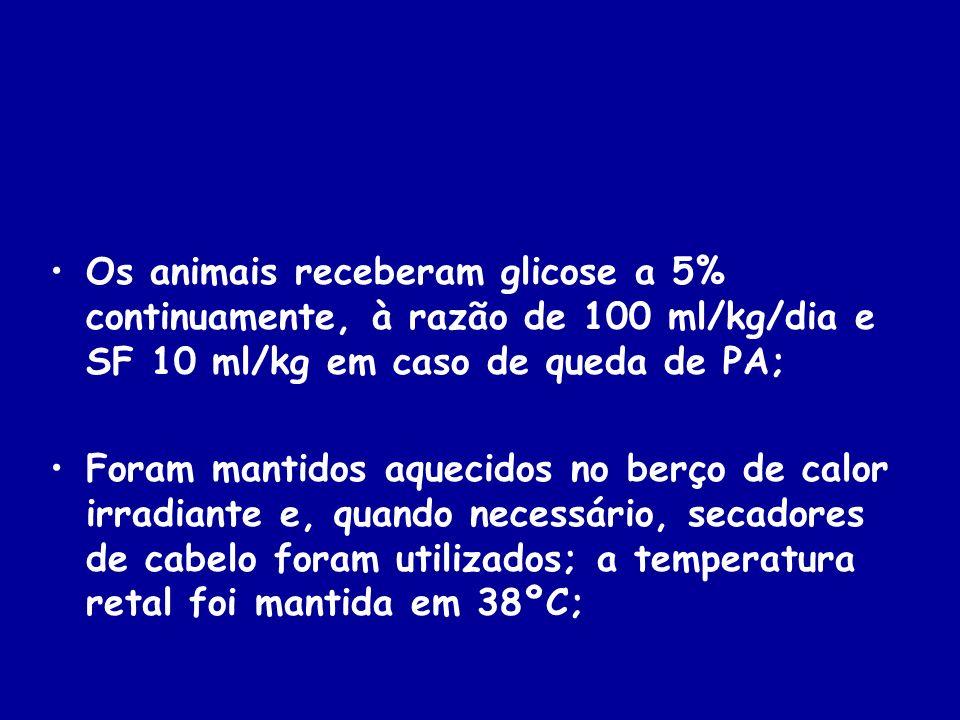 Os animais receberam glicose a 5% continuamente, à razão de 100 ml/kg/dia e SF 10 ml/kg em caso de queda de PA; Foram mantidos aquecidos no berço de c