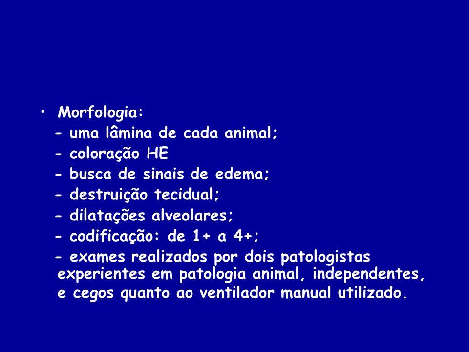 Morfologia: - uma lâmina de cada animal; - coloração HE - busca de sinais de edema; - destruição tecidual; - dilatações alveolares; - codificação: de