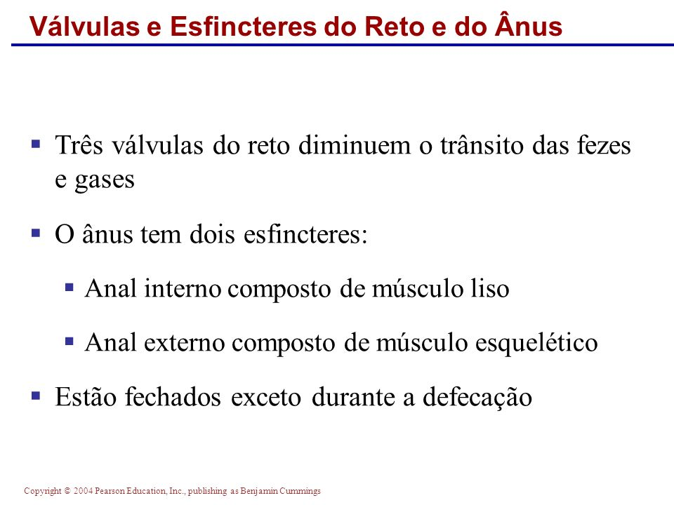 Copyright © 2004 Pearson Education, Inc., publishing as Benjamin Cummings Válvulas e Esfincteres do Reto e do Ânus Três válvulas do reto diminuem o tr