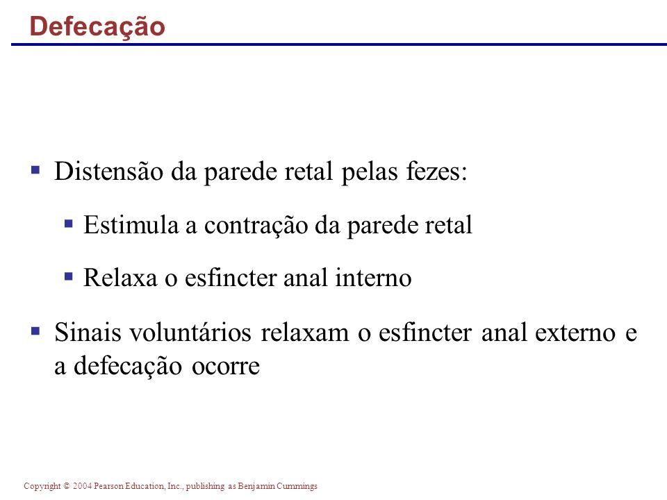 Copyright © 2004 Pearson Education, Inc., publishing as Benjamin Cummings Defecação Distensão da parede retal pelas fezes: Estimula a contração da par
