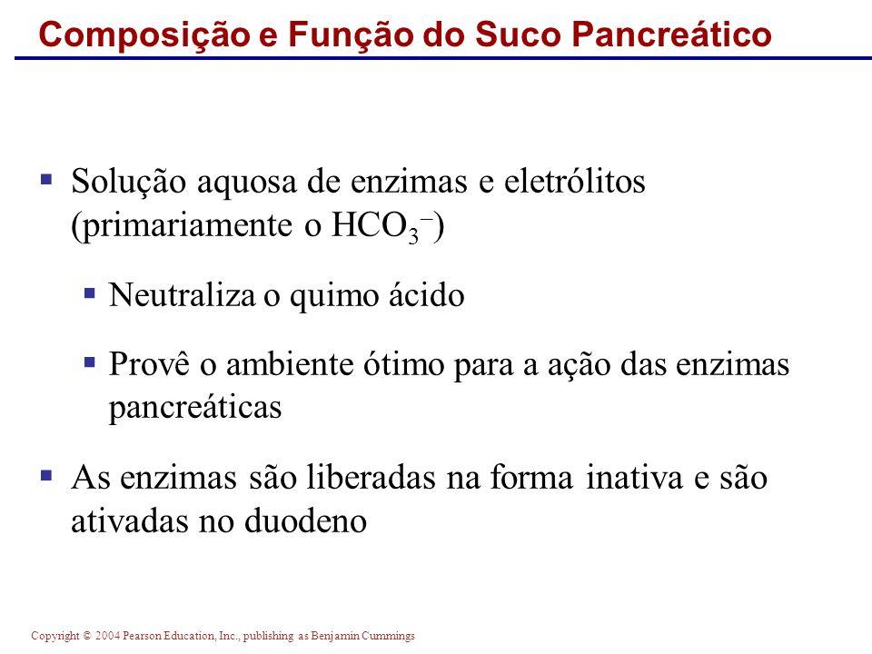 Copyright © 2004 Pearson Education, Inc., publishing as Benjamin Cummings Composição e Função do Suco Pancreático Solução aquosa de enzimas e eletróli