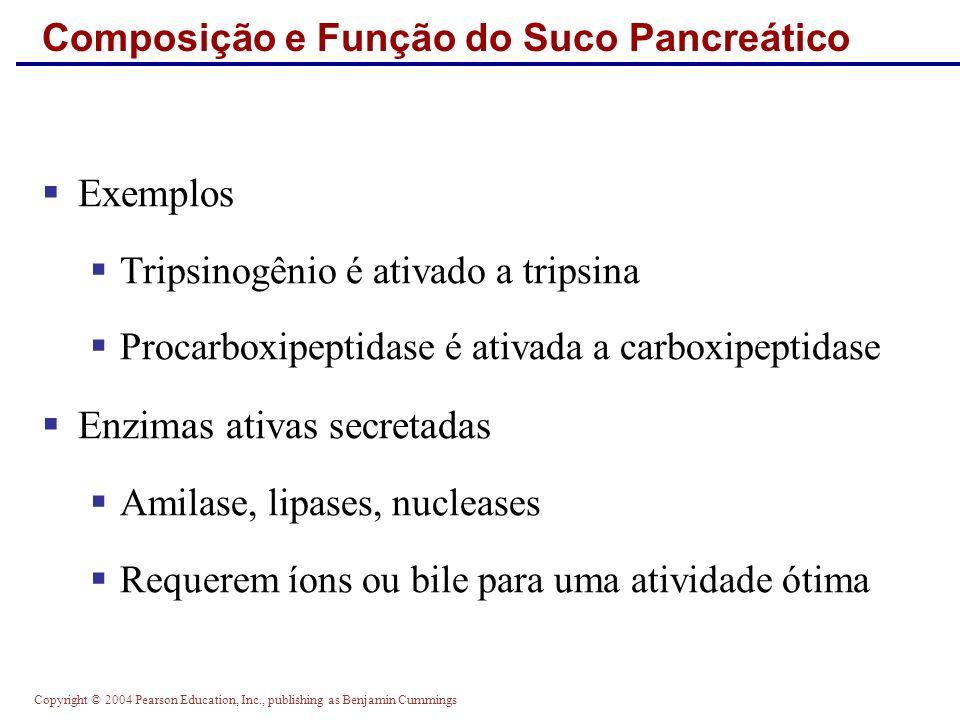 Copyright © 2004 Pearson Education, Inc., publishing as Benjamin Cummings Composição e Função do Suco Pancreático Exemplos Tripsinogênio é ativado a t
