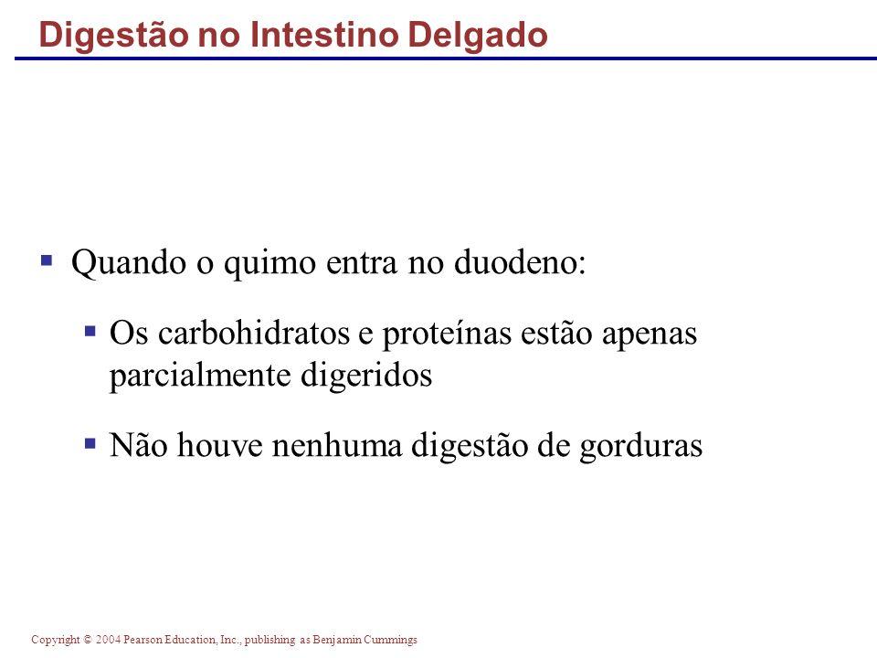 Copyright © 2004 Pearson Education, Inc., publishing as Benjamin Cummings Mesentérios dos Órgãos Digestivos Figure 23.30c