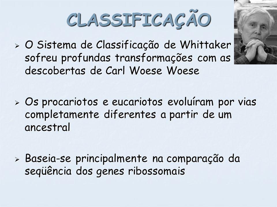 O Sistema de Classificação de Whittaker sofreu profundas transformações com as descobertas de Carl Woese Woese O Sistema de Classificação de Whittaker