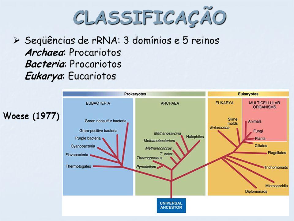 CLASSIFICAÇÃO Woese (1977) Seqüências de rRNA: 3 domínios e 5 reinos Archaea: Procariotos Bacteria: Procariotos Eukarya: Eucariotos