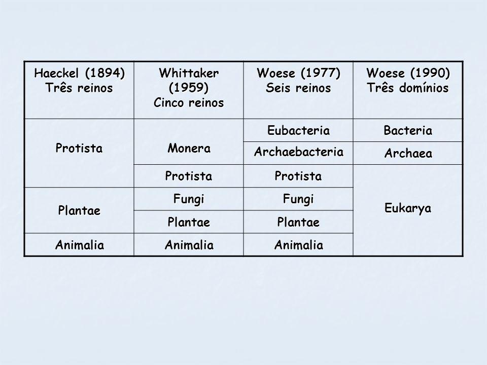 Haeckel (1894) Três reinos Whittaker (1959) Cinco reinos Woese (1977) Seis reinos Woese (1990) Três domínios ProtistaMoneraEubacteriaBacteria Archaeba