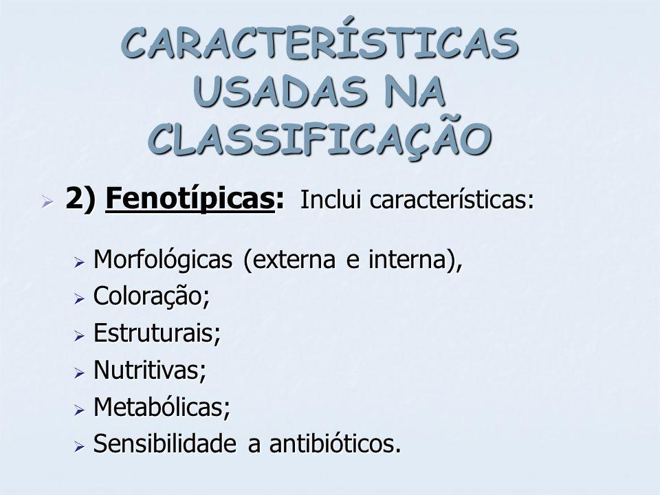 CARACTERÍSTICAS USADAS NA CLASSIFICAÇÃO 2) Fenotípicas: Inclui características: 2) Fenotípicas: Inclui características: Morfológicas (externa e intern