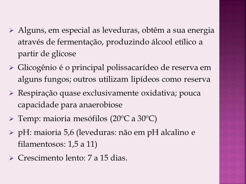 Alguns, em especial as leveduras, obtêm a sua energia através de fermentação, produzindo álcool etílico a partir de glicose Glicogênio é o principal polissacarídeo de reserva em alguns fungos; outros utilizam lipídeos como reserva Respiração quase exclusivamente oxidativa; pouca capacidade para anaerobiose Temp: maioria mesófilos (20ºC a 30ºC) pH: maioria 5,6 (leveduras: não em pH alcalino e filamentosos: 1,5 a 11) Crescimento lento: 7 a 15 dias.