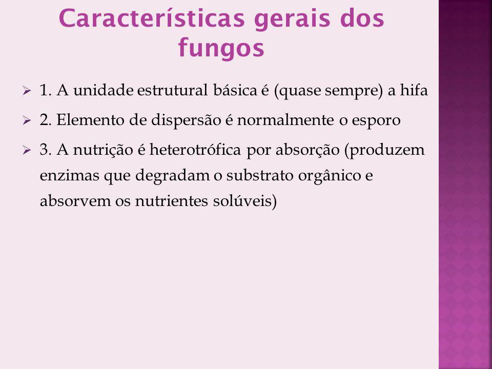 Características gerais dos fungos 1. A unidade estrutural básica é (quase sempre) a hifa 2. Elemento de dispersão é normalmente o esporo 3. A nutrição