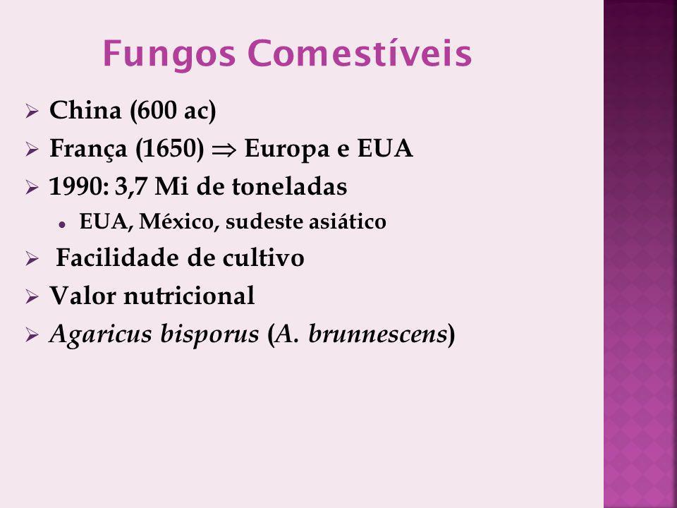 China (600 ac) França (1650) Europa e EUA 1990: 3,7 Mi de toneladas EUA, México, sudeste asiático Facilidade de cultivo Valor nutricional Agaricus bisporus ( A.