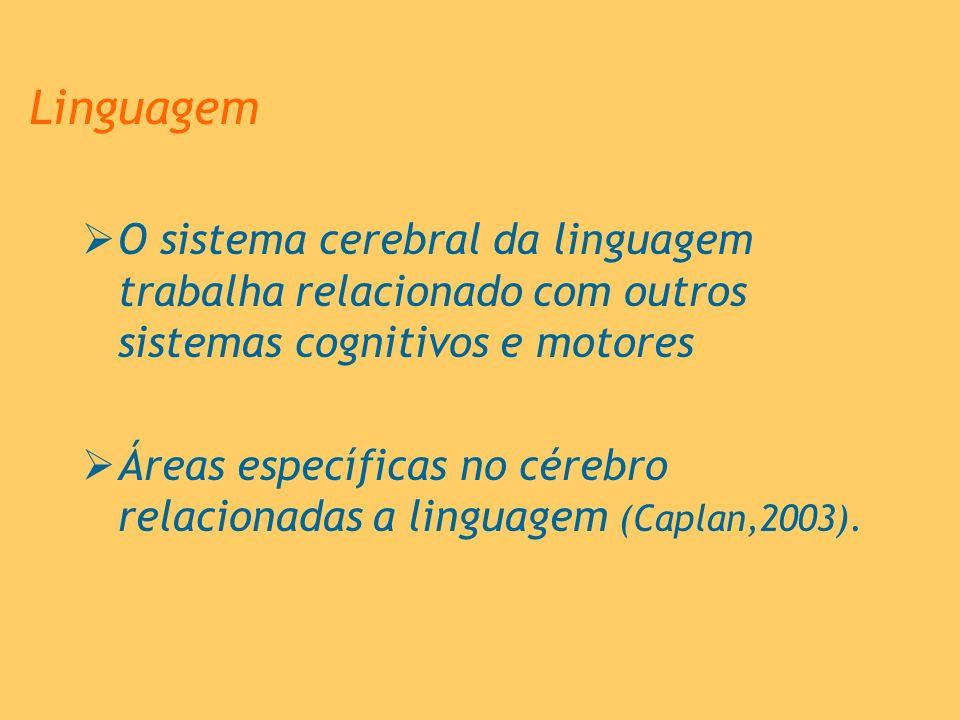 Linguagem O sistema cerebral da linguagem trabalha relacionado com outros sistemas cognitivos e motores Áreas específicas no cérebro relacionadas a li