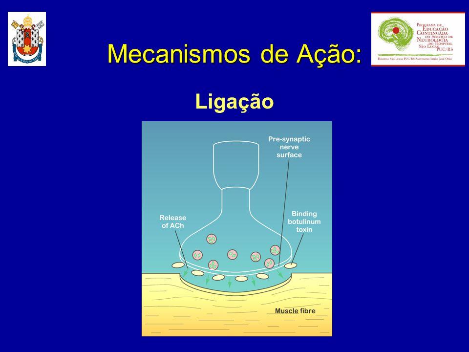 Mecanismos de Ação: Ligação