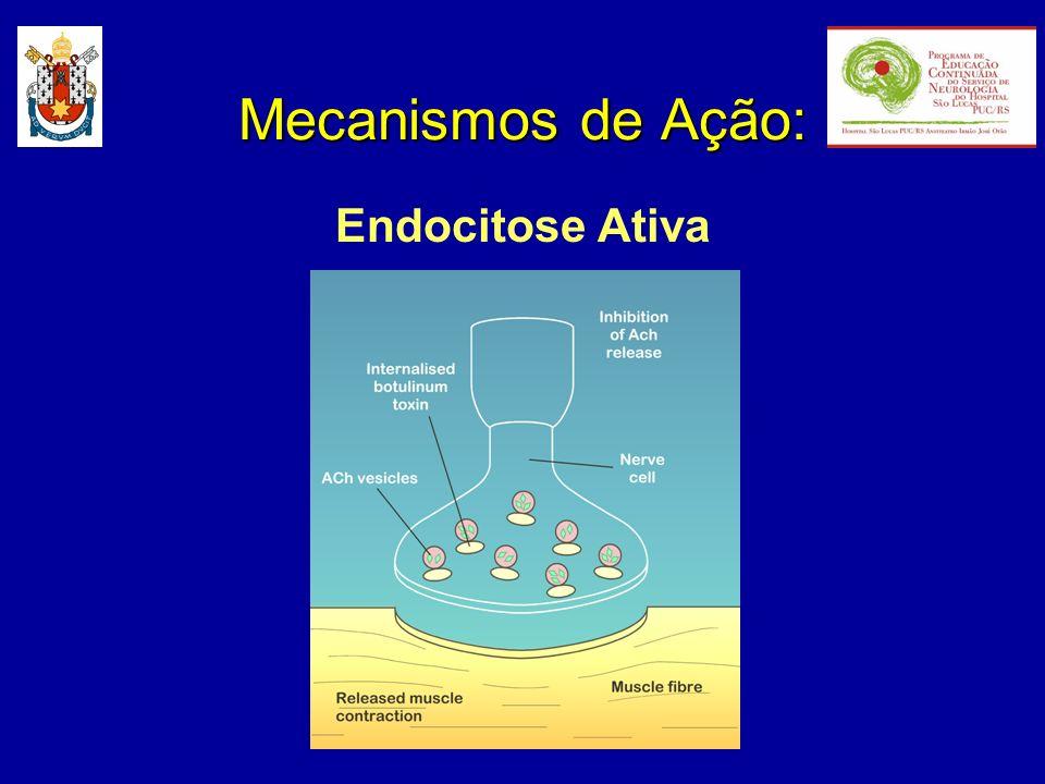 Mecanismos de Ação: Endocitose Ativa