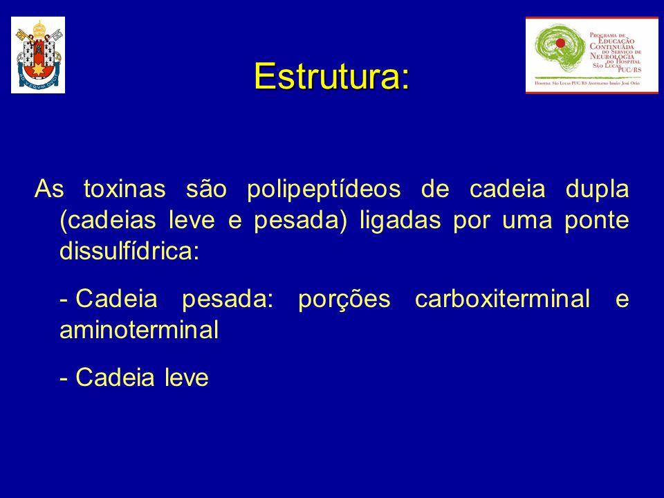 Estrutura: As toxinas são polipeptídeos de cadeia dupla (cadeias leve e pesada) ligadas por uma ponte dissulfídrica: - Cadeia pesada: porções carboxit