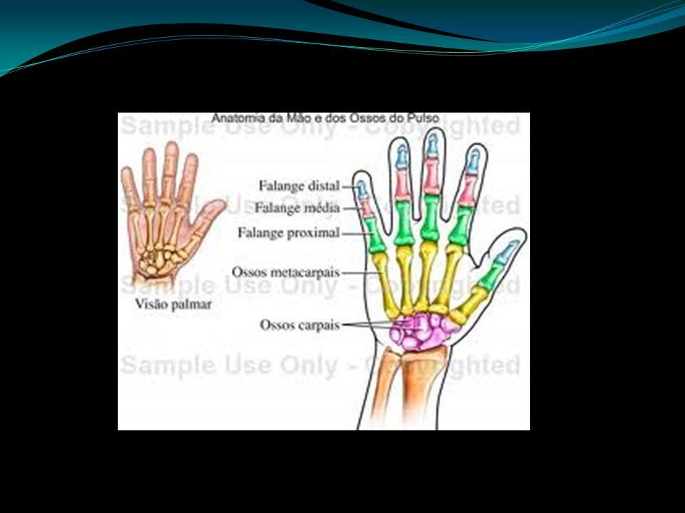 Fratura da Mão Uma fratura acontece quando determinada força aplicada ao osso é capaz de quebrá-lo.