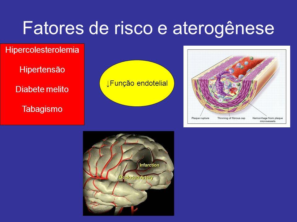 LUMEN MEDIA INTIMA Oxidized LDL Aterogênese