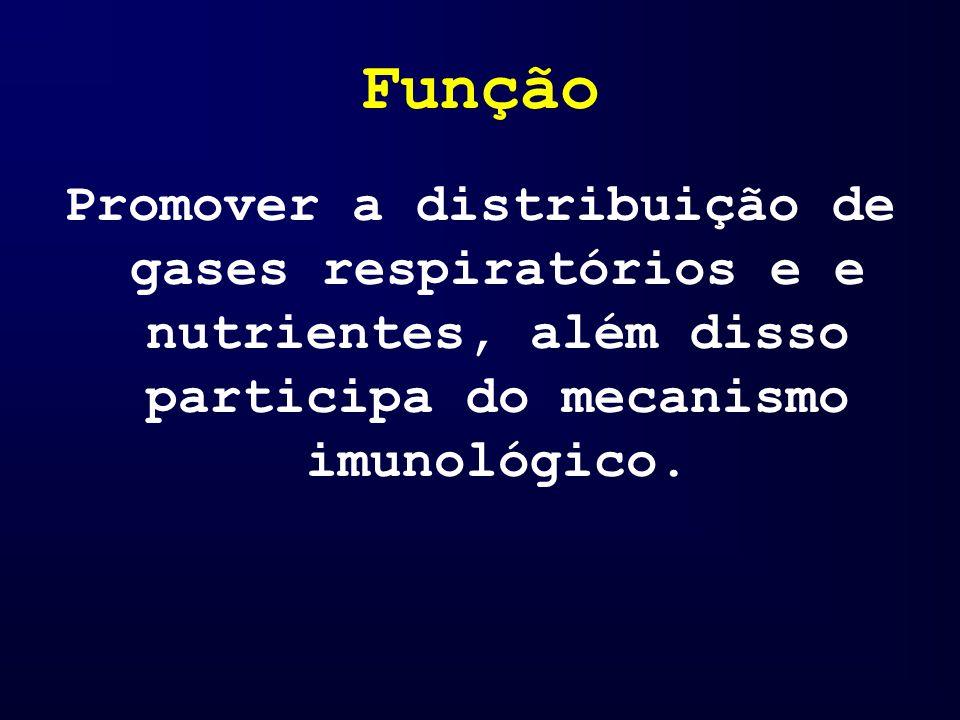 Componentes Plaquetas: Tem como função a coagulação sangüínea.