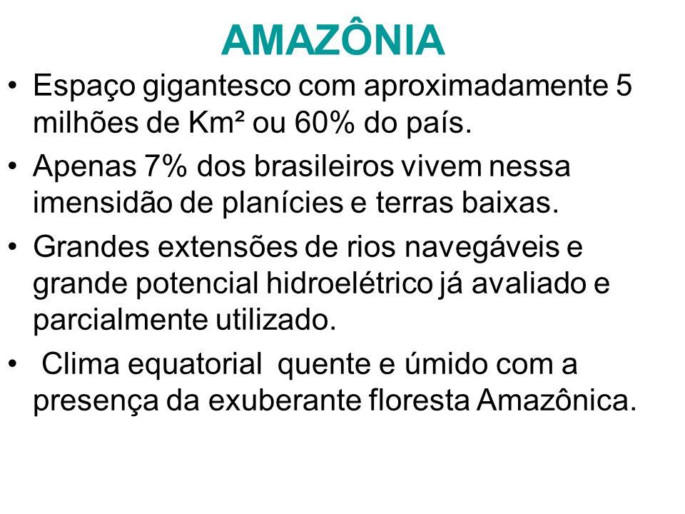 AMAZÔNIA Espaço gigantesco com aproximadamente 5 milhões de Km² ou 60% do país. Apenas 7% dos brasileiros vivem nessa imensidão de planícies e terras