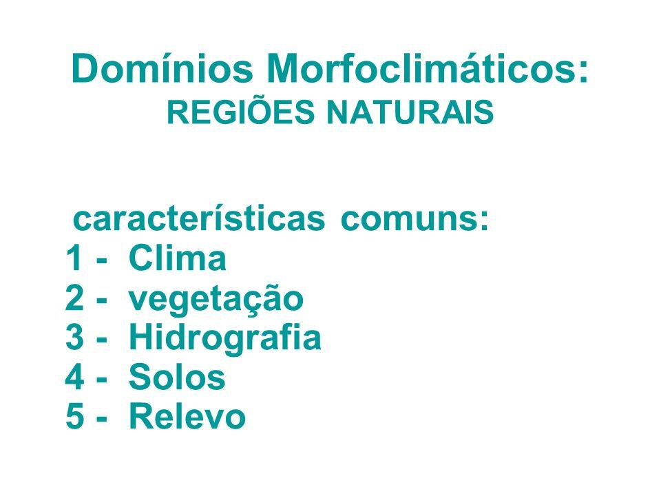 Domínios Morfoclimáticos: REGIÕES NATURAIS características comuns: 1 - Clima 2 - vegetação 3 - Hidrografia 4 - Solos 5 - Relevo